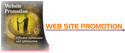 Website Promotion - SEO Services